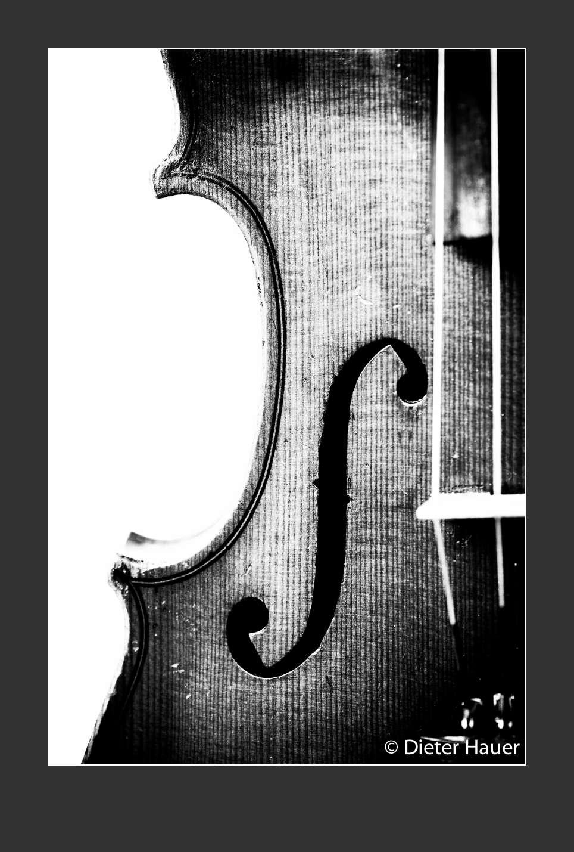 Violine Korpus 2