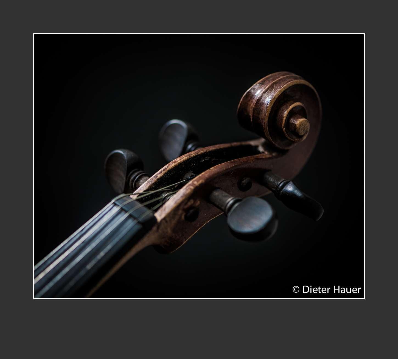 Violine Kopf 1