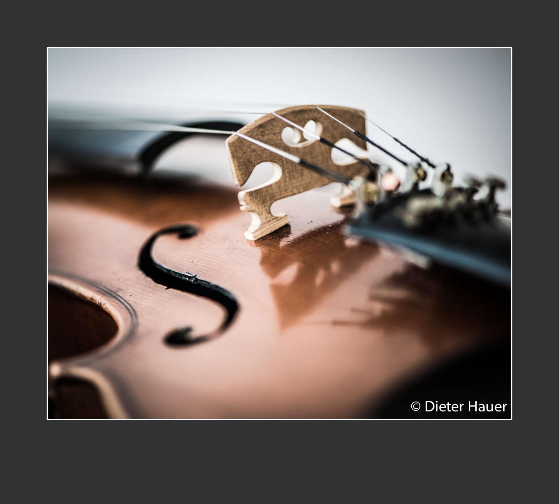 Violine Korpus 1